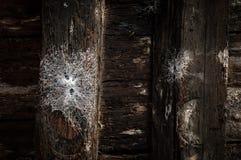 Βερόνα Στοκ φωτογραφία με δικαίωμα ελεύθερης χρήσης