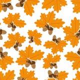 Βελανίδια με τα δρύινα φύλλα στην άνευ ραφής σύσταση φθινοπώρου ελεύθερη απεικόνιση δικαιώματος