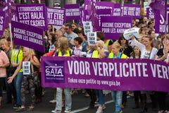 Βελγική διαμαρτυρία ενεργών στελεχών της Gaia στις οδούς των Βρυξελλών Στοκ εικόνα με δικαίωμα ελεύθερης χρήσης