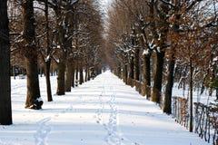 Βιέννη Στοκ φωτογραφίες με δικαίωμα ελεύθερης χρήσης