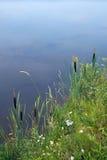 βιασύνη τοπίων λιμνών στοκ φωτογραφία