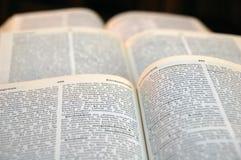 βιβλία ανοικτά Στοκ Εικόνες
