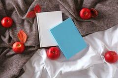 Βιβλία με το φλυτζάνι των μήλων τσαγιού και φθινοπώρου Στοκ φωτογραφίες με δικαίωμα ελεύθερης χρήσης