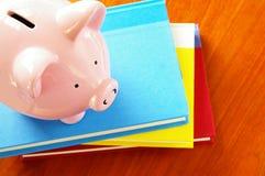 βιβλία piggy στοκ εικόνα με δικαίωμα ελεύθερης χρήσης