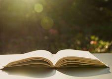 βιβλίο ανοικτό Βιβλίο ανοικτό στον παλαιό ξύλινο πίνακα στη φύση Στοκ Εικόνες