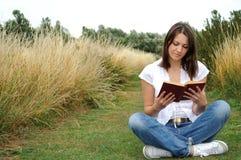 βιβλίο που διαβάζει υπαί στοκ εικόνες