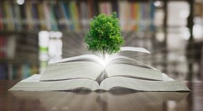 Βιβλιοθήκη βιβλίων εκπαίδευσης δέντρων και περιβάλλοντος που τοποθετείται Στοκ Φωτογραφία