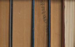 Βιβλία σε ένα ράφι Στοκ φωτογραφίες με δικαίωμα ελεύθερης χρήσης