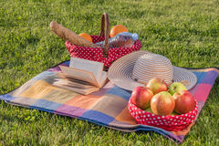 Βιβλίο, καπέλο και καλάθι των ώριμων φρούτων και των τροφίμων Στοκ φωτογραφία με δικαίωμα ελεύθερης χρήσης