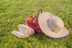 Βιβλίο, καπέλο και καλάθι των ώριμων φρούτων Στοκ φωτογραφίες με δικαίωμα ελεύθερης χρήσης