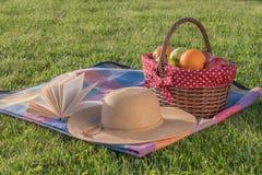 Βιβλίο, καπέλο και καλάθι των ώριμων φρούτων Στοκ φωτογραφία με δικαίωμα ελεύθερης χρήσης