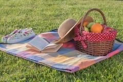 Βιβλίο, καπέλο και καλάθι των ώριμων φρούτων Στοκ Εικόνες