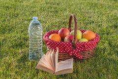 Βιβλίο, μπουκάλι νερό και καλάθι των ώριμων φρούτων Στοκ Εικόνα