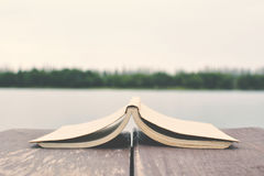 Βιβλίο στο ξύλο Στοκ εικόνα με δικαίωμα ελεύθερης χρήσης