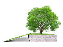 Βιβλίο της φύσης με το δέντρο Στοκ εικόνες με δικαίωμα ελεύθερης χρήσης