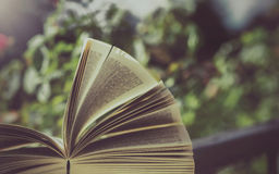 Βιβλίο υπαίθριο στη φύση Στοκ Εικόνες