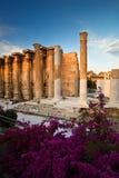 Βιβλιοθήκη του Αδριανού, Αθήνα στοκ εικόνα με δικαίωμα ελεύθερης χρήσης