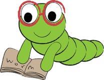 Βιβλιόψειρα Στοκ Εικόνες