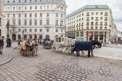 ΒΙΕΝΝΗ, ΑΥΣΤΡΙΑ - 10 ΟΚΤΩΒΡΊΟΥ 2016: Μεταφορά αλόγων στη Βιέννη, Αυστρία Έλξη για τους τουρίστες Στοκ Εικόνες