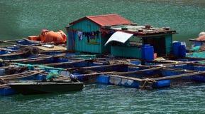 Βιετνάμ - μακρύς κόλπος εκταρίου - μικρά αγροκτήματα ψαριών - κλείστε επάνω στοκ εικόνα με δικαίωμα ελεύθερης χρήσης