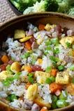Βιετναμέζικα τρόφιμα, τηγανισμένο ρύζι, ασιατική κατανάλωση Στοκ φωτογραφίες με δικαίωμα ελεύθερης χρήσης