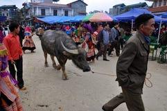 Βιετναμέζικοι λαοί στα παραδοσιακά ενδύματα, Βιετνάμ στοκ εικόνες