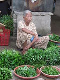 Βιετναμέζικος στάβλος αγοράς στοκ εικόνα