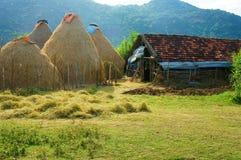 Βιετναμέζικο χωριό, σωρός του αχύρου, σταύλος, Βιετνάμ στοκ φωτογραφία με δικαίωμα ελεύθερης χρήσης