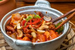 Βιετναμέζικο ύφος κοτόπουλου των δυτικών ανακαρδίων στοκ εικόνες