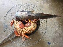 Βιετναμέζικο BBQ serrata Scylla καβουριών λάσπης καβούρι ή ψημένο στη σχάρα καβούρι Στοκ εικόνες με δικαίωμα ελεύθερης χρήσης