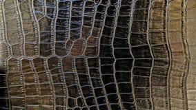 Βινυλίου σύσταση επίδρασης Snakeskin στοκ φωτογραφίες με δικαίωμα ελεύθερης χρήσης
