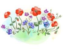Βιολέτες και pansy και φύλλα λουλουδιών Watercolor στο λιβάδι στοκ εικόνες