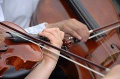 βιολί βιολοντσέλων Στοκ Φωτογραφίες