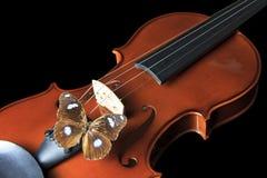 Βιολί και πεταλούδα Στοκ Εικόνες
