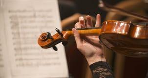 Βιολί παιχνιδιού μουσικών απόθεμα βίντεο