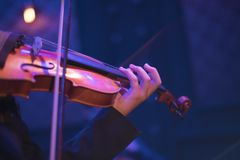 Βιολί σε μια συναυλία στοκ εικόνες