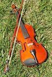 βιολί χλόης Στοκ φωτογραφία με δικαίωμα ελεύθερης χρήσης