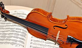 βιολί Στοκ Εικόνα