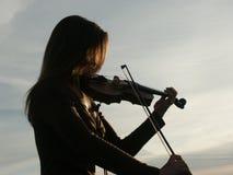 βιολί Στοκ Φωτογραφίες