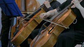 Βιολοντσέλο παιχνιδιού γυναικών και ανδρών απόθεμα βίντεο