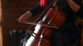 Βιολοντσέλο παιχνιδιού χεριών γυναικών στο στούντιο φιλμ μικρού μήκους