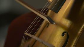 Βιολοντσέλο στην ορχήστρα Βιολοντσέλο παιχνιδιού μουσικών φιλμ μικρού μήκους