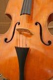 βιολοντσέλο στοκ εικόνες
