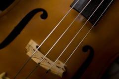 βιολοντσέλο Στοκ φωτογραφίες με δικαίωμα ελεύθερης χρήσης