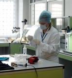 Βιολόγος-εμπειρογνώμονας στο εργαστήριο της έρευνας DNA του ειδικός-δικανικού κέντρου της αστυνομίας της Μόσχας στοκ εικόνα