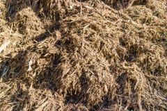 Βιομάζα από τα γεωργικά και ξύλινα απόβλητα Στοκ Εικόνες