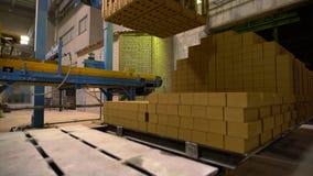 Βιομηχανία Άποψη της παλέτας με τα τούβλα στο εργαστήριο απόθεμα βίντεο