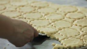 Βιομηχανία ζαχαρωδών προϊόντων μπισκότων κουλουρακιών απόθεμα βίντεο