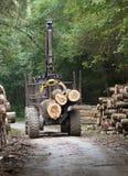 Βιομηχανία ξυλείας Στοκ Εικόνες
