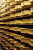 βιομηχανία τυριών Στοκ Φωτογραφία